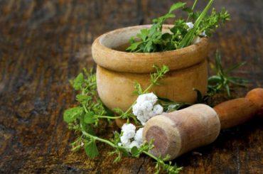 Alternativas en los Tratamientos para Gonorrea