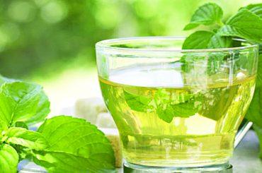 Efectos del Te Verde en la Salud