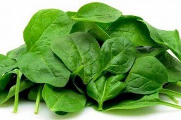 Beneficios de Comer Espinaca