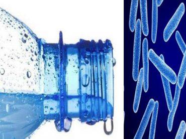 Reutilizar botellas de agua : 3 datos alarmantes
