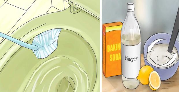 Limpiar el inodoro de forma natural - Conecta Salud