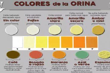 Significado color de la orina para la salud