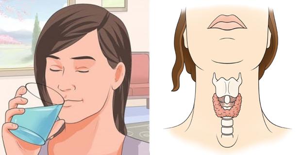 Activar el metabolismo ajustando glándula tiroides