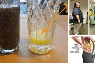 Semillas de chia para pérdida de peso