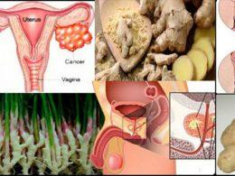 Tratar varios tipos de cáncer con jengibre