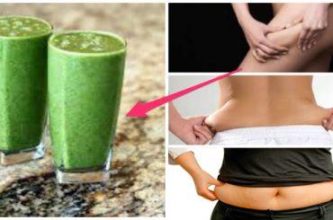 Como perder peso y desintoxicar el organismo