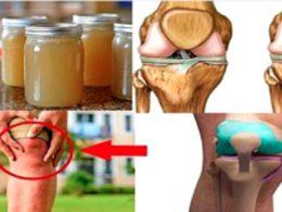 Gelatina para acabar con el dolor de huesos , tendones y cartílagos