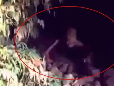 Descubren Extraño Ser en un Cueva. [VÍDEO]