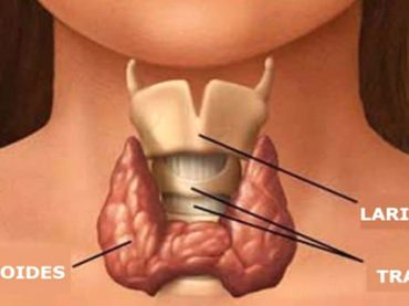 Consejos Prácticos para Mejorar Tus Problemas de Tiroides
