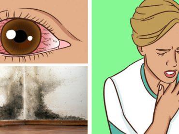 Enfermedad Provocada por el Moho y Como Tratarla
