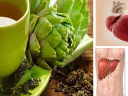 Quedarás Sorprendido de Todos los Beneficios al Tomar Una Taza de Agua de Alcachofas Todas las Mañanas
