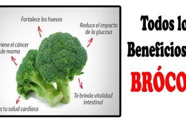 Todos los Beneficios que nos Aporta el Brócoli