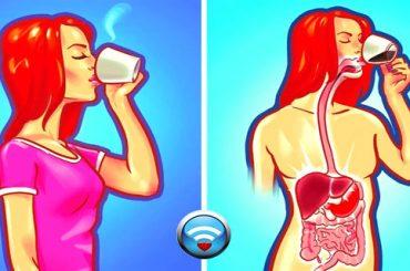 9 Cosas Que Nunca Debes Hacer Con El Estómago Vacío