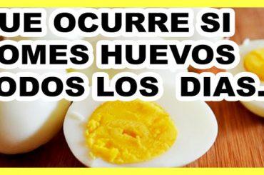Efectos Positivos de Comer Huevos a Diario